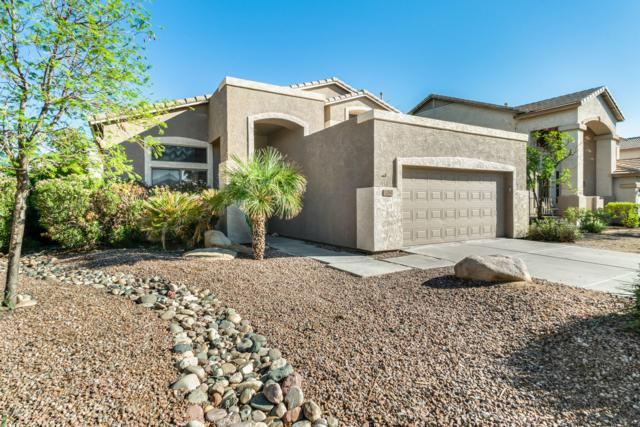 12742 W Merrell Street, Avondale, AZ 85392 (MLS #5831507) :: The Daniel Montez Real Estate Group