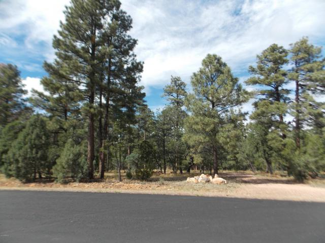 1518 Mainline Road, Heber, AZ 85928 (MLS #5831540) :: Brett Tanner Home Selling Team