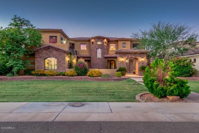 1114 W Seldon Lane, Phoenix, AZ 85021 (MLS #5831559) :: Yost Realty Group at RE/MAX Casa Grande