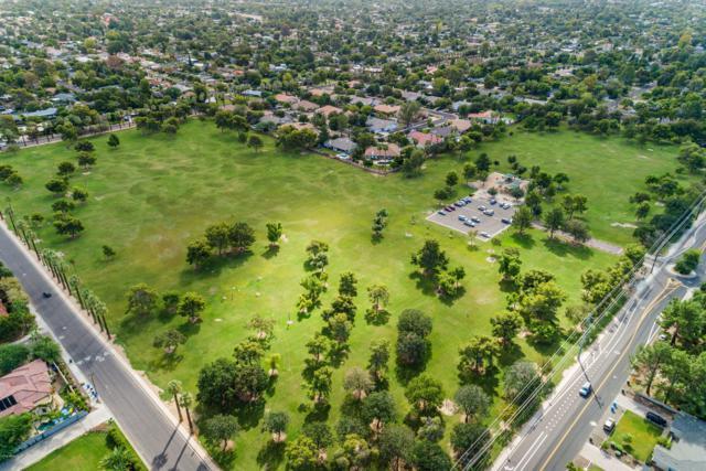 1231 W Orchid Lane, Phoenix, AZ 85021 (MLS #5831564) :: Yost Realty Group at RE/MAX Casa Grande