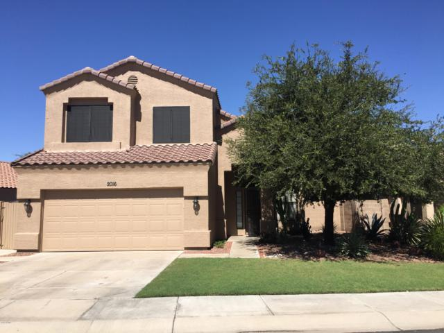 2016 W Carol Ann Way, Phoenix, AZ 85023 (MLS #5831615) :: The Garcia Group @ My Home Group