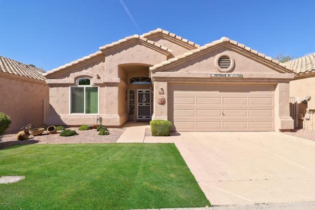 17174 N Willow Path, Surprise, AZ 85374 (MLS #5831639) :: Desert Home Premier