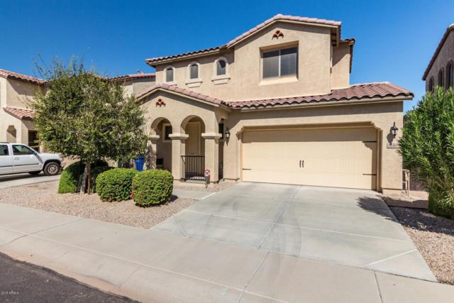 3246 E Greenview Drive, Gilbert, AZ 85298 (MLS #5831670) :: The Kenny Klaus Team