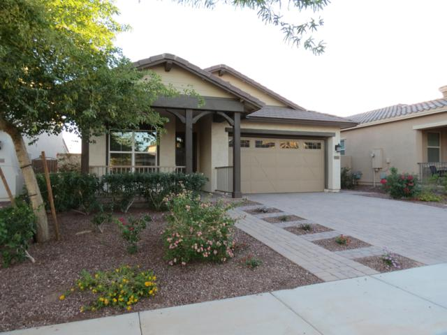 20519 W Nelson Place, Buckeye, AZ 85396 (MLS #5831680) :: The Daniel Montez Real Estate Group