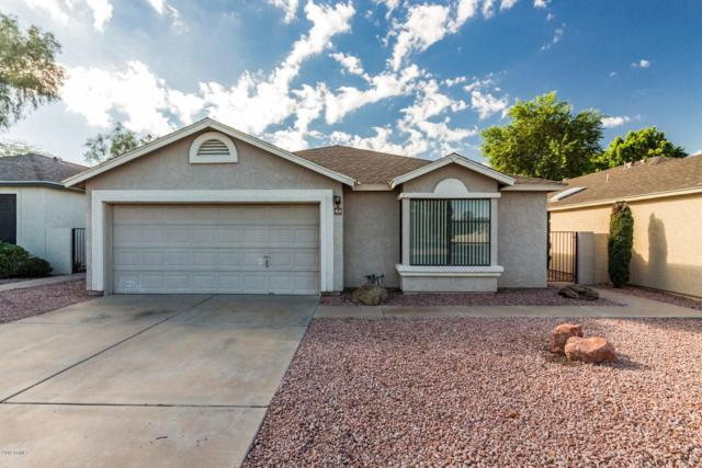 4725 E Brown Road #53, Mesa, AZ 85205 (MLS #5831686) :: Desert Home Premier