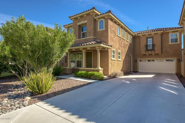 9125 S Terry Lane, Tempe, AZ 85284 (MLS #5831693) :: RE/MAX Excalibur