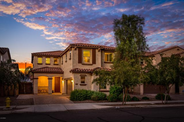 3106 E Franklin Avenue, Gilbert, AZ 85295 (MLS #5831711) :: The Garcia Group @ My Home Group