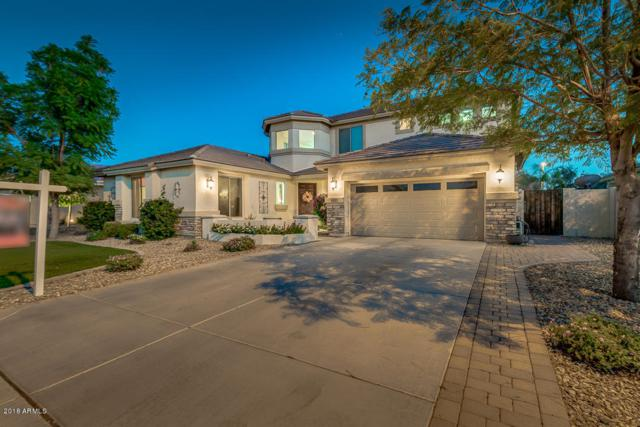 3439 E Fandango Drive, Gilbert, AZ 85298 (MLS #5831798) :: The Kenny Klaus Team