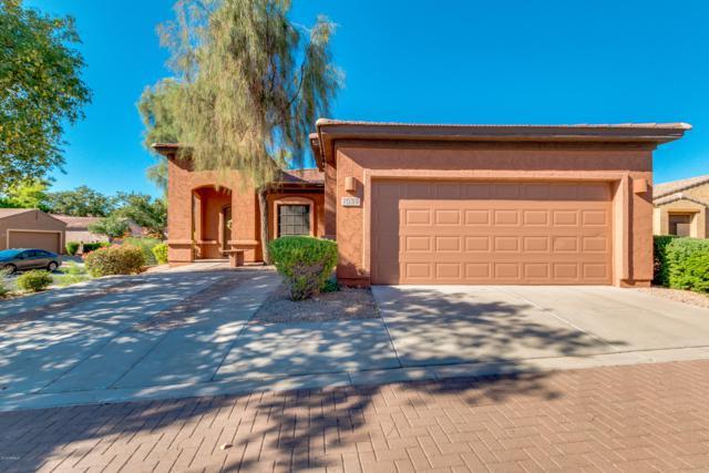 7039 S Golfside Lane, Phoenix, AZ 85042 (MLS #5831805) :: The Garcia Group