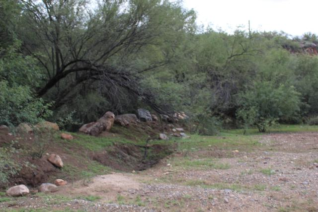 00000 S K Mine Road, Black Canyon City, AZ 85324 (MLS #5831815) :: Lifestyle Partners Team