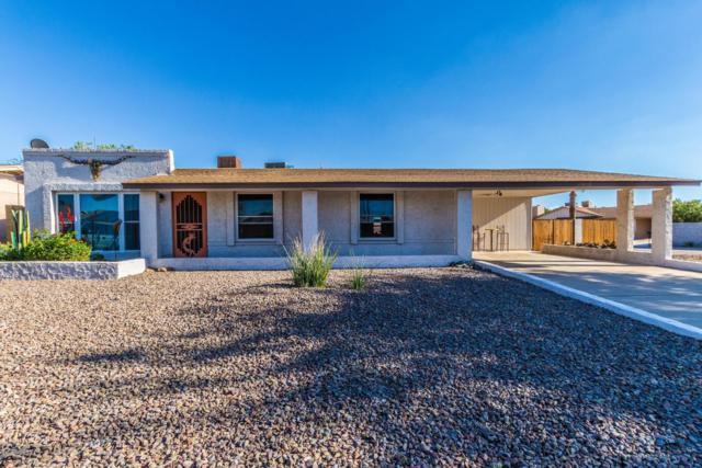 19839 N 17TH Drive, Phoenix, AZ 85027 (MLS #5831878) :: Lifestyle Partners Team