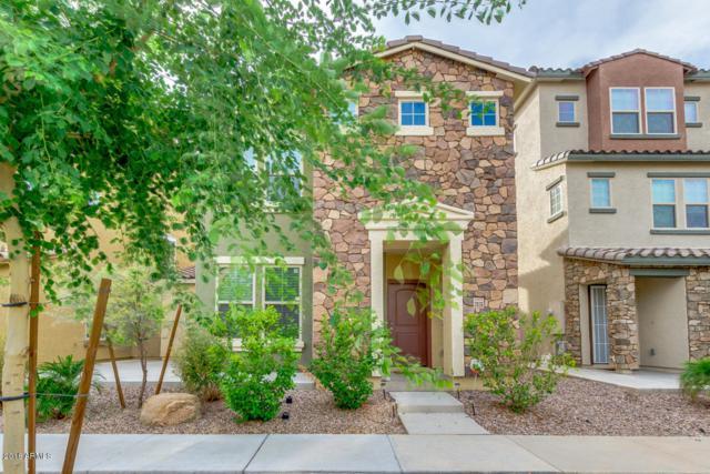2036 N 77TH Lane, Phoenix, AZ 85035 (MLS #5831884) :: The Garcia Group