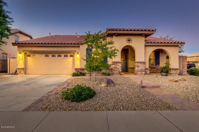 2848 E Fandango Drive, Gilbert, AZ 85298 (MLS #5831915) :: The Kenny Klaus Team