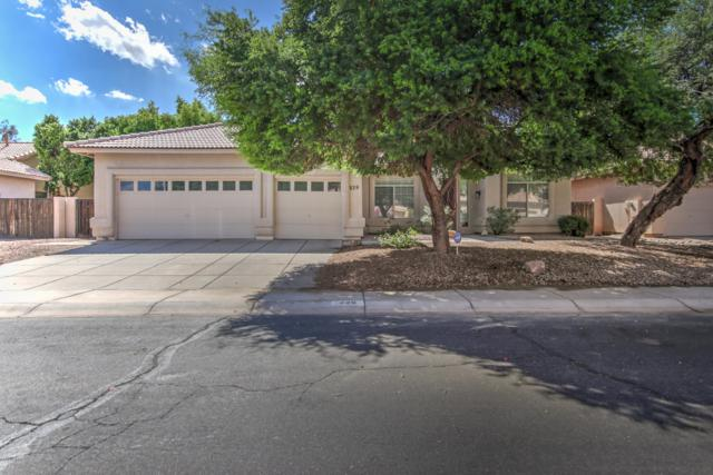 229 E Palomino Court, Gilbert, AZ 85296 (MLS #5831960) :: Yost Realty Group at RE/MAX Casa Grande