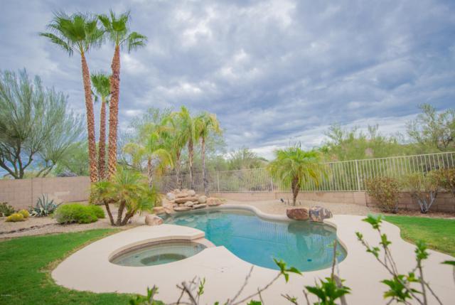 5337 E Forest Pleasant Place, Cave Creek, AZ 85331 (MLS #5832005) :: Arizona Best Real Estate