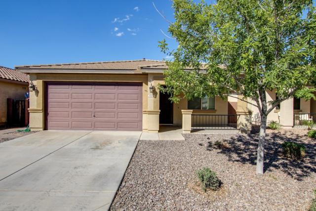 804 W Press Road, San Tan Valley, AZ 85140 (MLS #5832016) :: The Garcia Group