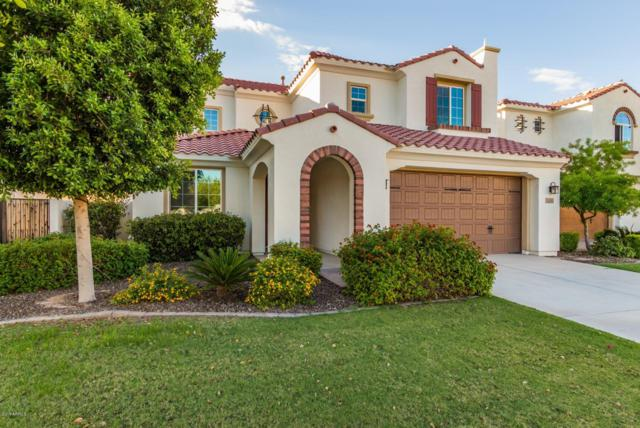 3160 S Waterfront Drive, Chandler, AZ 85248 (MLS #5832129) :: Occasio Realty