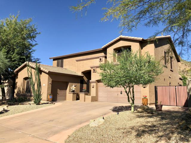 35017 N 25th Lane, Phoenix, AZ 85086 (MLS #5832198) :: The Jesse Herfel Real Estate Group