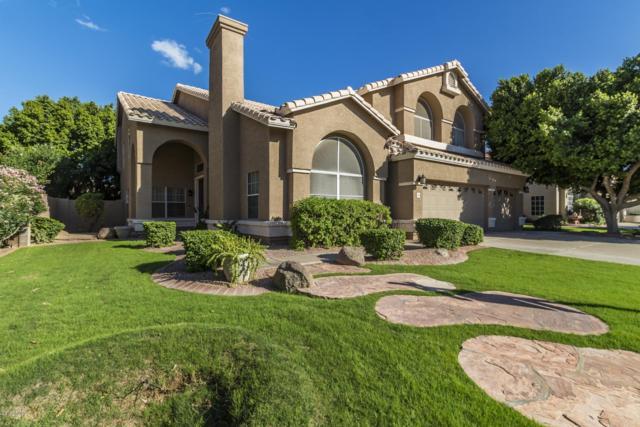 2431 S Date, Mesa, AZ 85210 (MLS #5832219) :: The Garcia Group @ My Home Group