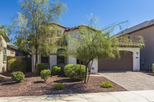 21925 N 97TH Drive, Peoria, AZ 85383 (MLS #5832242) :: Arizona 1 Real Estate Team