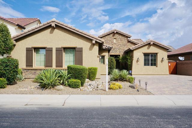 582 W Zion Place, Chandler, AZ 85248 (MLS #5832256) :: Relevate   Phoenix