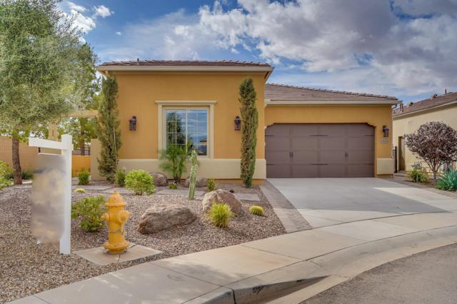 1705 E Copper Hollow, San Tan Valley, AZ 85140 (MLS #5832289) :: Yost Realty Group at RE/MAX Casa Grande