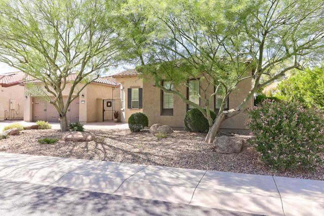 28254 N 123RD Lane, Peoria, AZ 85383 (MLS #5832339) :: Desert Home Premier