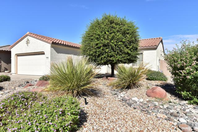 18964 N Alameda Drive, Surprise, AZ 85387 (MLS #5832344) :: The Everest Team at My Home Group