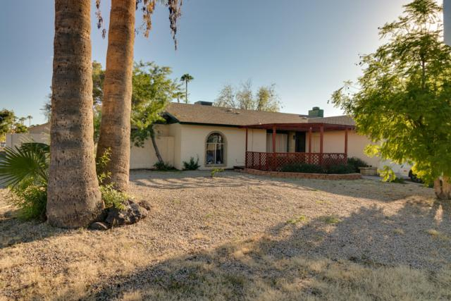 5303 W Christy Drive, Glendale, AZ 85304 (MLS #5832366) :: The Garcia Group @ My Home Group