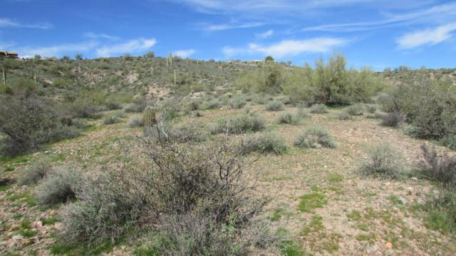 0 N Blue Coyote Trail, Fort McDowell, AZ 85264 (MLS #5832369) :: Team Wilson Real Estate