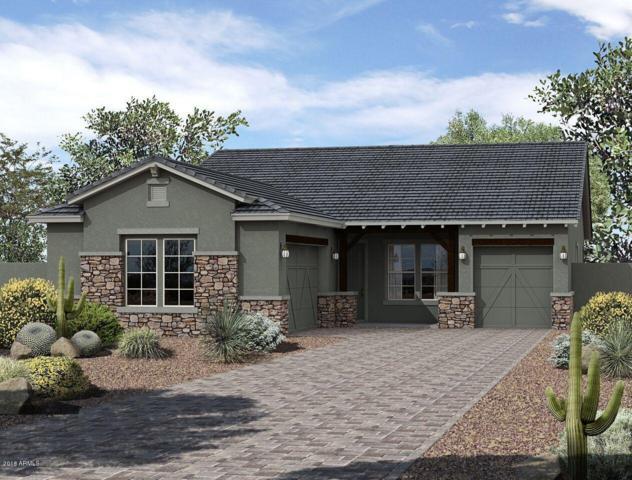 12314 N 145TH Avenue, Surprise, AZ 85379 (MLS #5832438) :: Phoenix Property Group