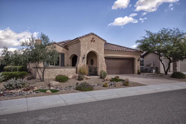 19705 N 271ST Avenue, Buckeye, AZ 85396 (MLS #5832461) :: Desert Home Premier