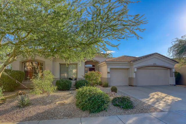 7577 E Buteo Drive, Scottsdale, AZ 85255 (MLS #5832471) :: The Garcia Group