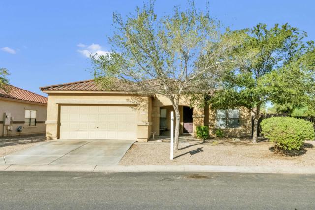 3110 S Calle Noventa, Mesa, AZ 85212 (MLS #5832486) :: Lux Home Group at  Keller Williams Realty Phoenix