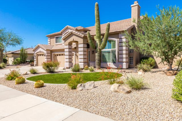 7624 E Wing Shadow Road, Scottsdale, AZ 85255 (MLS #5832522) :: My Home Group