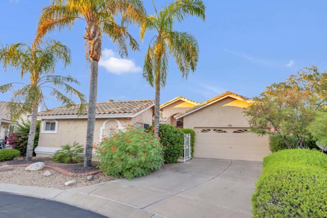 14428 W Powderhorn Drive, Surprise, AZ 85374 (MLS #5832547) :: Desert Home Premier