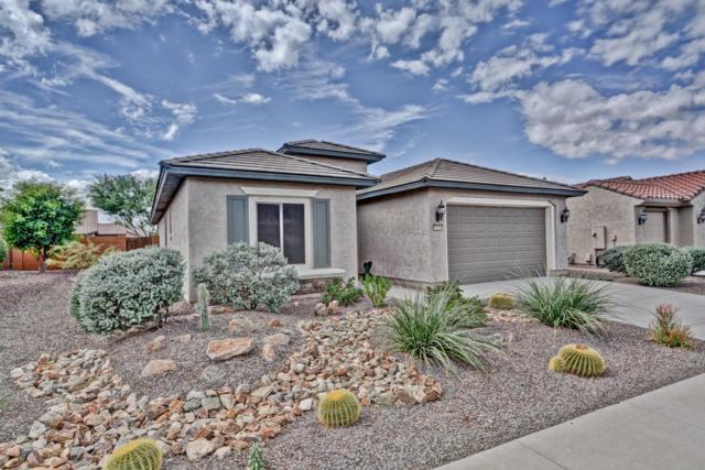 20260 N 267TH Lane, Buckeye, AZ 85396 (MLS #5832549) :: Desert Home Premier
