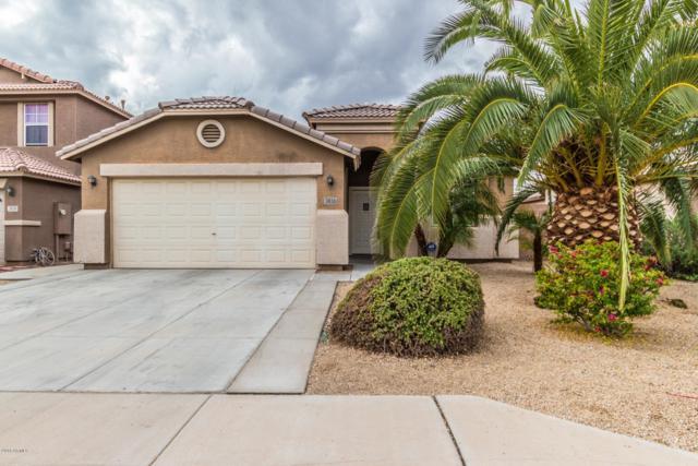 3430 S 72ND Lane, Phoenix, AZ 85043 (MLS #5832592) :: Lux Home Group at  Keller Williams Realty Phoenix
