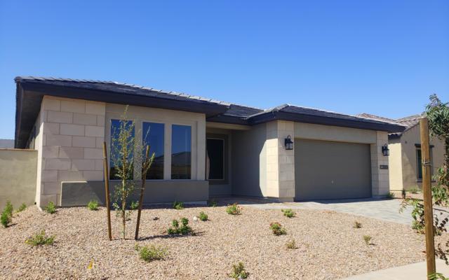 12886 N 144TH Drive, Surprise, AZ 85379 (MLS #5832662) :: Phoenix Property Group