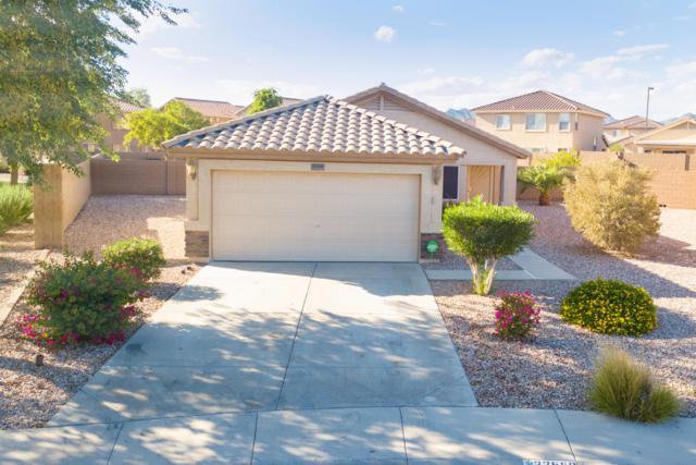 22558 W Hadley Street, Buckeye, AZ 85326 (MLS #5832663) :: CANAM Realty Group