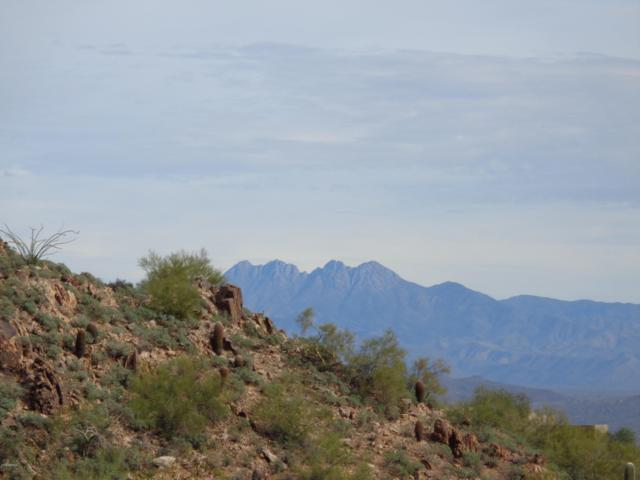 14623 E Shadow Canyon Drive, Fountain Hills, AZ 85268 (MLS #5832688) :: Yost Realty Group at RE/MAX Casa Grande