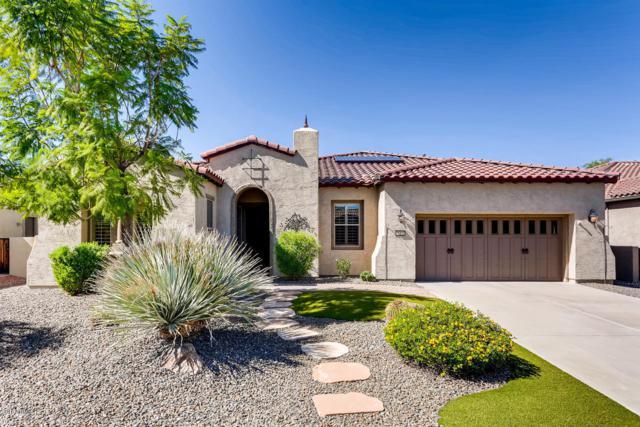 28238 N 123RD Lane, Peoria, AZ 85383 (MLS #5832703) :: Desert Home Premier