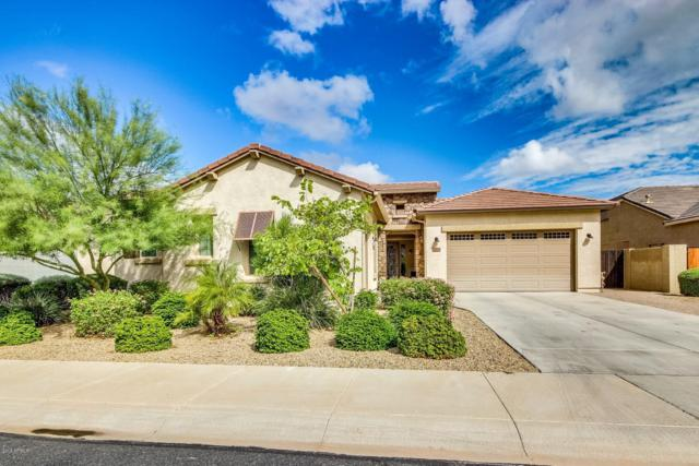 16214 W Coronado Road, Goodyear, AZ 85395 (MLS #5832759) :: Scott Gaertner Group