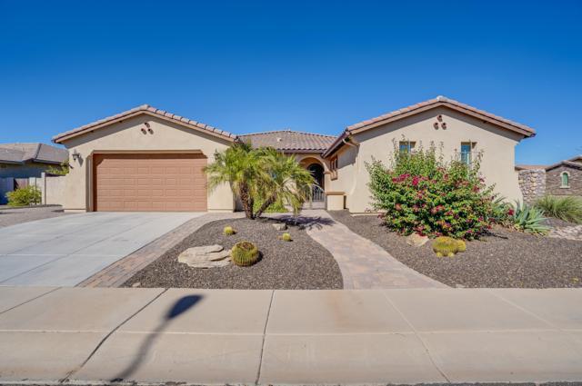 3674 E Blue Ridge Place, Chandler, AZ 85249 (MLS #5832793) :: The Garcia Group @ My Home Group