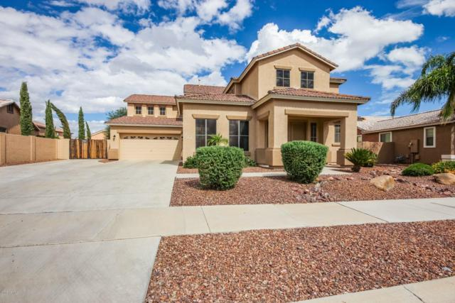 14112 W Poinsettia Drive, Surprise, AZ 85379 (MLS #5832864) :: The Garcia Group