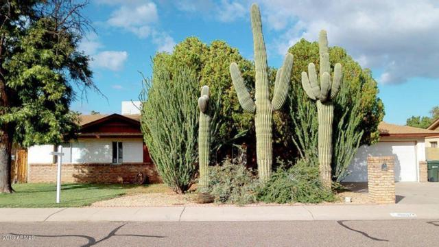 18812 N 19th Drive, Phoenix, AZ 85027 (MLS #5832923) :: Yost Realty Group at RE/MAX Casa Grande