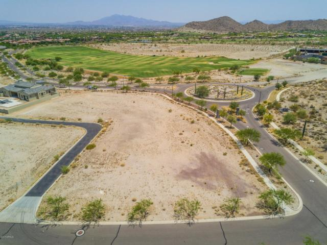 21452 W Highlands Drive, Buckeye, AZ 85396 (MLS #5832939) :: Brett Tanner Home Selling Team