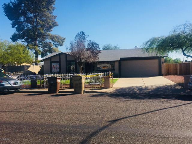 7401 W Hatcher Road, Peoria, AZ 85345 (MLS #5832977) :: Kortright Group - West USA Realty