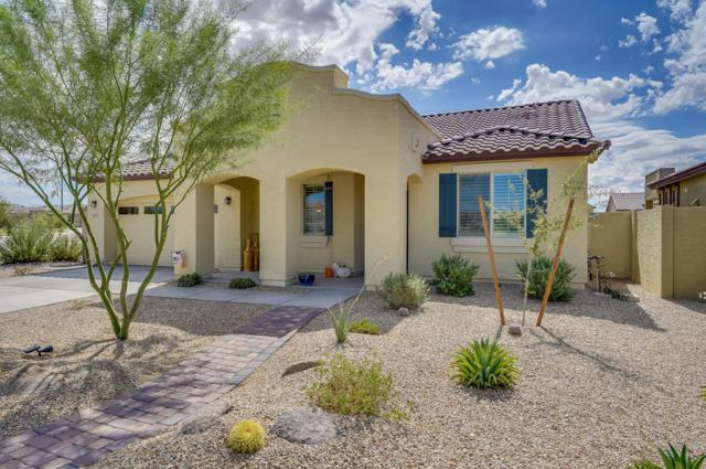 18177 W Redwood Lane, Goodyear, AZ 85338 (MLS #5833005) :: Phoenix Property Group