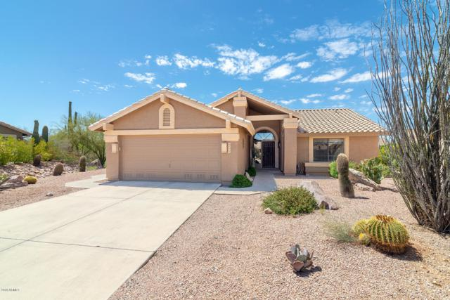 8499 E Jumping Cholla Drive, Gold Canyon, AZ 85118 (MLS #5833010) :: The Everest Team at My Home Group